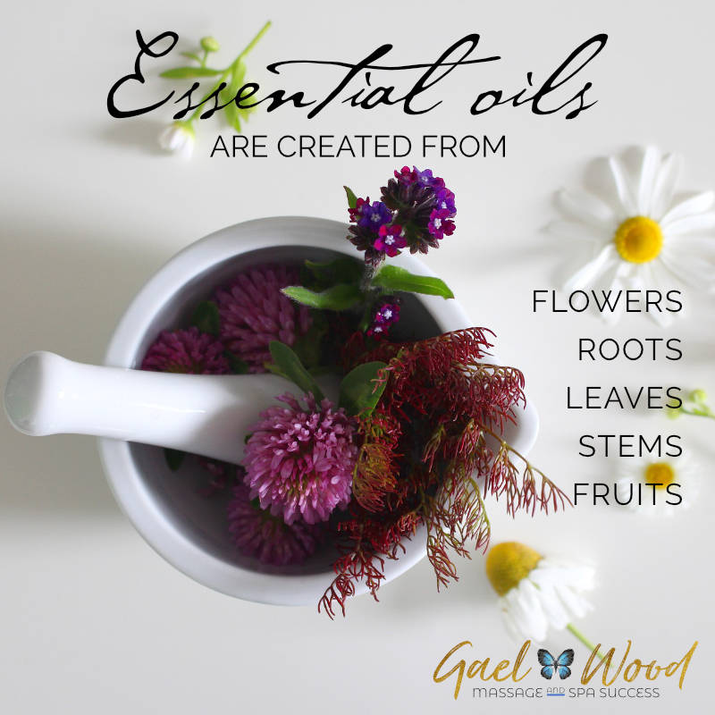 ACC-Essential-oils-created-from-flowers-roots-stems-leaves-fruits