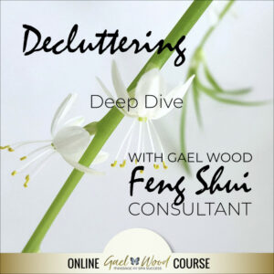 Decluttering Deep Dive with Gael Wood Feng Shui Consultant