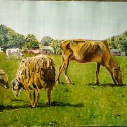 cattle on landscape, 22 x 16 inch, tripati dey,paintings,animal paintings,paintings for living room,paper,oil,22x16inch,GAL0421810001