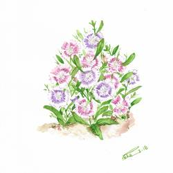 rainbow pinks , 9 x 12 inch, esha lal,paintings,flower paintings,paintings for bedroom,renaissance watercolor paper,watercolor,9x12inch,GAL0432510209