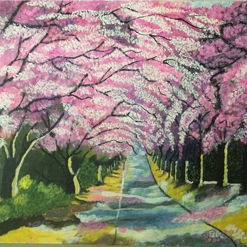 cherry blossoms, 12 x 16 inch, kamala gopalakrishnan,paintings,nature paintings,paintings for living room,canvas,acrylic color,12x16inch,GAL0454810233Nature,environment,Beauty,scenery,greenery