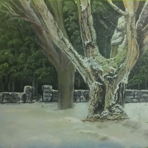 dark green tree, 8 x 10 inch, subodh sharma,landscape paintings,paintings for living room,canvas,oil,8x10inch,GAL0363110358