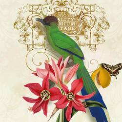 Green Bird art print by Gallerist