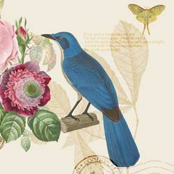 Blue Bird 3 art print by Gallerist