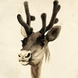 The Reindeer art print by Gallerist