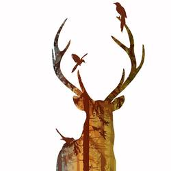 Single Deer 2 art print by Gallerist