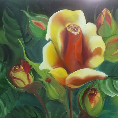 mera, 20 x 33 inch, pankaj tunwal,flower paintings,paintings for living room,canvas,oil,20x33inch,GAL04331061