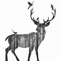 Single deer with birds 1 art print by Gallerist