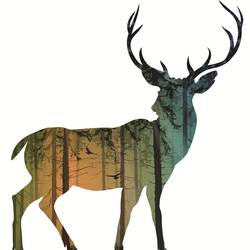Single Deer in forest art print by Gallerist