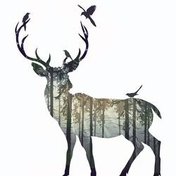 Single Deer 3 art print by Gallerist
