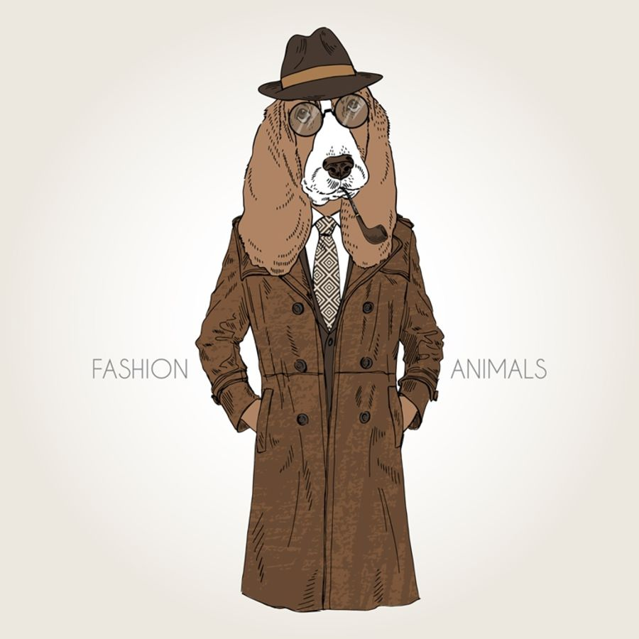 The brown Jacket