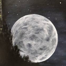 full moon, 16 x 12 inch, sanjana  v,nature paintings,paintings for living room,paintings for bedroom,paintings for kids room,paintings for hotel,canvas,acrylic color,16x12inch,GAL0415810847Nature,environment,Beauty,scenery,greenery