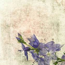 Purple flowers art print by Gallerist