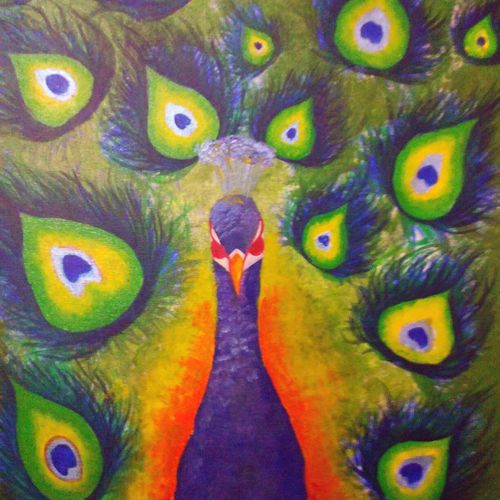 peacock tradition , 19 x 20 inch, nishant  kumar,nature paintings,paintings for living room,canvas,acrylic color,19x20inch,GAL04511095Nature,environment,Beauty,scenery,greenery,peacock,national bird,