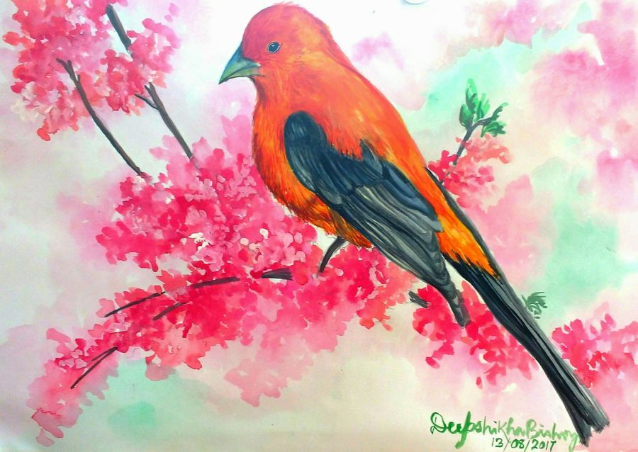 the colorful bird, 16 x 12 inch, deepshikha bishoyi,wildlife paintings,animal paintings,contemporary paintings,realistic paintings,paintings for dining room,paintings for living room,paintings for bedroom,paintings for office,paintings for hotel,paper,mixed media,poster color,watercolor,16x12inch,GAL0473911012