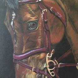 horse , 16 x 20 inch, parul narain,wildlife paintings,animal paintings,realistic paintings,horse paintings,paintings for office,paintings for kids room,paintings for hotel,paintings for office,paintings for kids room,paintings for hotel,canvas,acrylic color,16x20inch,GAL0474711018
