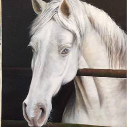 horse , 16 x 20 inch, parul narain,paintings,wildlife paintings,animal paintings,horse paintings,paintings for office,paintings for kids room,paintings for hotel,paintings for office,paintings for kids room,paintings for hotel,canvas,acrylic color,16x20inch,GAL0474711020