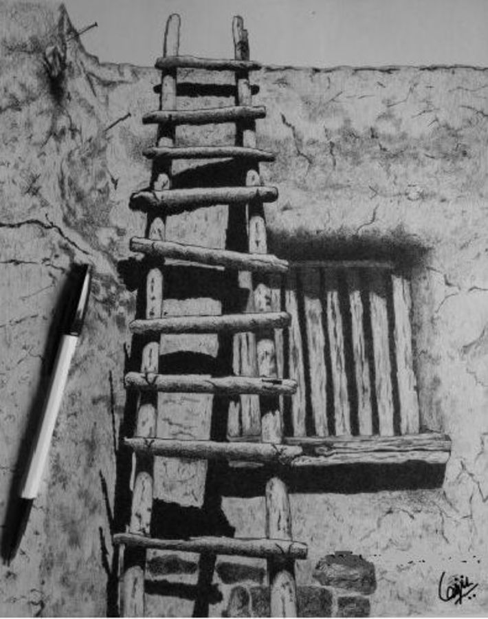 ladder, 11 x 14 inch, biju puthiyapurail,conceptual drawings,paintings for living room,drawings,fine art drawings,paintings for office,paintings for hotel,ivory sheet,ball point pen,11x14inch,GAL04741124