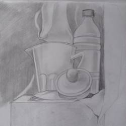 still life 2, 11 x 15 inch, sangita  dey,paintings for living room,fine art drawings,modern drawings,drawing paper,graphite pencil,11x15inch,GAL0483711388