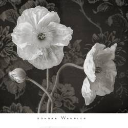 The white flowers art print by Gallerist