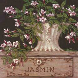 Jasmin art print by Gallerist