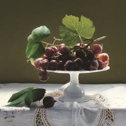 Grapes art print by Gallerist