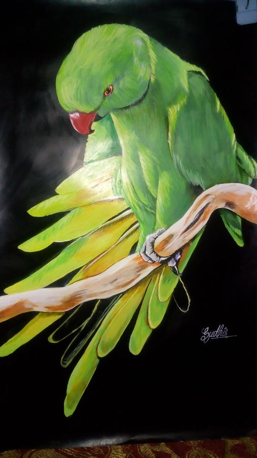 pride parrot, 15 x 18 inch, sudhir meshram,paintings,wildlife paintings,nature paintings,paintings for living room,ivory sheet,acrylic color,poster color,15x18inch,GAL0488811629Nature,environment,Beauty,scenery,greenery