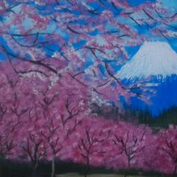 sakura, 16 x 12 inch, pranoti mulay,nature paintings,paintings for dining room,paintings for living room,paintings for bedroom,paintings for office,paintings for hotel,canvas,acrylic color,16x12inch,GAL0451612035Nature,environment,Beauty,scenery,greenery