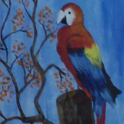parrot canvas, 10 x 12 inch, peddu sruta keerthi,nature paintings,paintings for living room,paintings for living room,canvas,acrylic color,10x12inch,GAL0522812248Nature,environment,Beauty,scenery,greenery