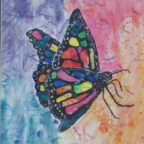 butterfly canvas, 10 x 12 inch, peddu sruta keerthi,nature paintings,paintings for living room,canvas,acrylic color,10x12inch,GAL0522812250Nature,environment,Beauty,scenery,greenery