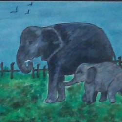 elephant canvas, 12 x 10 inch, peddu sruta keerthi,nature paintings,paintings for living room,canvas,acrylic color,12x10inch,GAL0522812251Nature,environment,Beauty,scenery,greenery