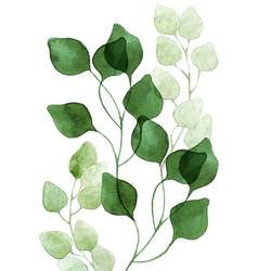 Beautiful green leaf 1 art print by Gallerist
