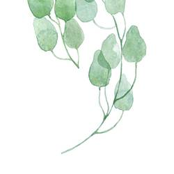 Light green leaf  art print by Gallerist