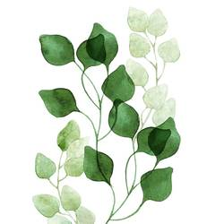 Beautiful green leaf 2 art print by Gallerist