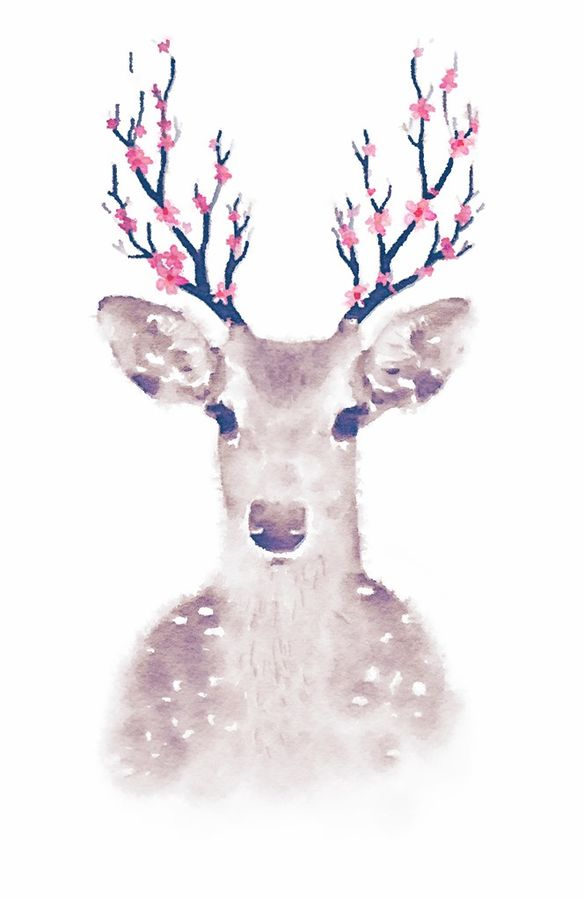Deer with white dot