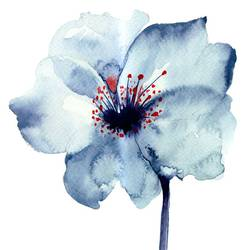Blue flower with white shade art print by Gallerist