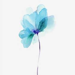 Light blue flower  art print by Gallerist