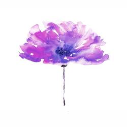 Purple flower  art print by Gallerist