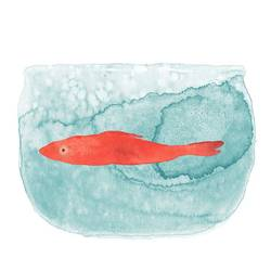 Fish in water  art print by Gallerist