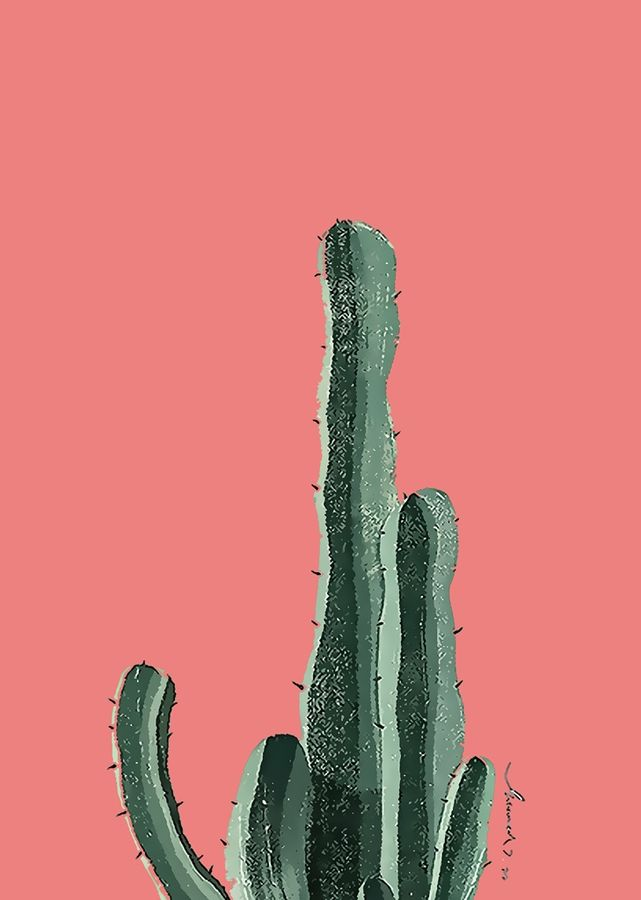 The long cactus
