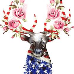 American deer  art print by Gallerist