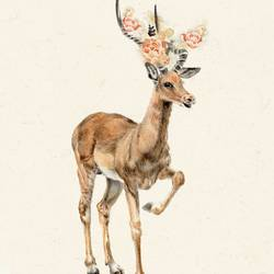 Standing deer art print by Gallerist