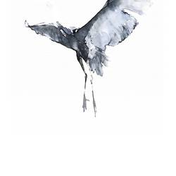 Flying eagel art print by Gallerist