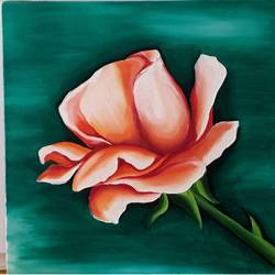 rose, 12 x 12 inch, madhuri  roy,paintings,flower paintings,paintings for dining room,paintings for living room,paintings for bedroom,paintings for office,paintings for hotel,canvas board,oil,12x12inch,GAL0527612508
