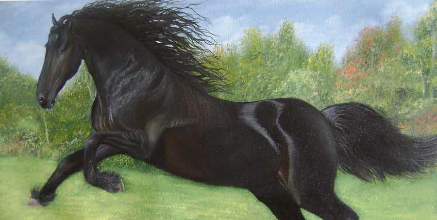black beauty, 22 x 12 inch, goutami mishra,wildlife paintings,paintings for living room,canvas,oil,22x12inch,GAL04651270