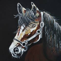 horse, 24 x 30 inch, harini  suresh,paintings,animal paintings,paintings for living room,canvas,acrylic color,24x30inch,GAL0351612706