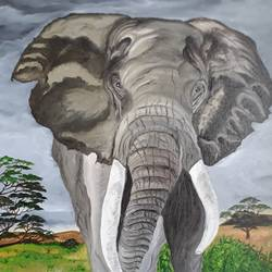 tusker 2, 24 x 30 inch, pranav bhatnagar,wildlife paintings,paintings for dining room,paintings for living room,nature paintings,animal paintings,paintings for school,canvas,oil paint,24x30inch,GAL0280212772,elephant