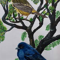 bird 4, 14 x 22 inch, pranav bhatnagar,paintings,wildlife paintings,paintings for dining room,paintings for living room,paintings for bedroom,paintings for kids room,paintings for hotel,ivory sheet,poster color,14x22inch,GAL0280212773