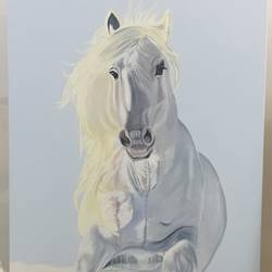 white horse on snow, 30 x 50 inch, akansha punjabi,paintings,wildlife paintings,animal paintings,horse paintings,paintings for living room,paintings for office,paintings for hotel,canvas,oil,oil paint,30x50inch,GAL0546012863