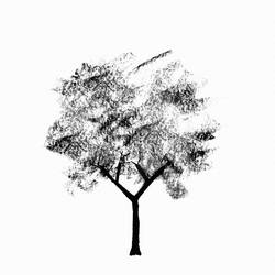 Black tree  art print by Gallerist